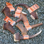 Jumbled Jumbos Staglers dog chews for your pet