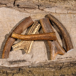 Staglers 100% Natural Deer Antler Dog Chew - Small for pet dogs