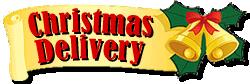 christmasdelivery14