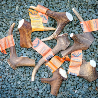 Staglers Deer Antler Dog Chew - Eccentric Extra Larges Ideal Pet treat