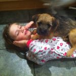 Biscuit The Border Terrier led on girl