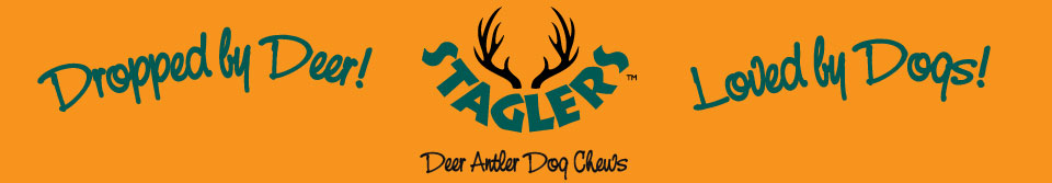 Loved by Dogs Staglers banner