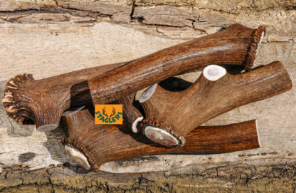 Staglers Jumbo Deer Antler Dog Treat is a Doggie Chew for Big Dogs