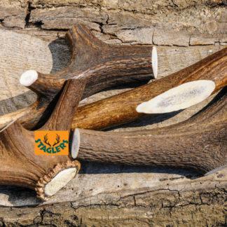 Staglers 100% Natural Deer Antler Dog Chew - Extra Large Staglers tough natural pet treat
