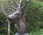 Nadine Collinson Sculptor with Staglers antler for deer head
