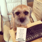 Taking your dog to work from Staglers