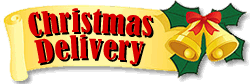 christmasdelivery14