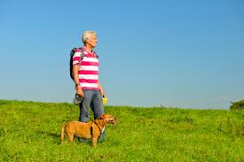 Are Dogs An Anti-Aging Cure